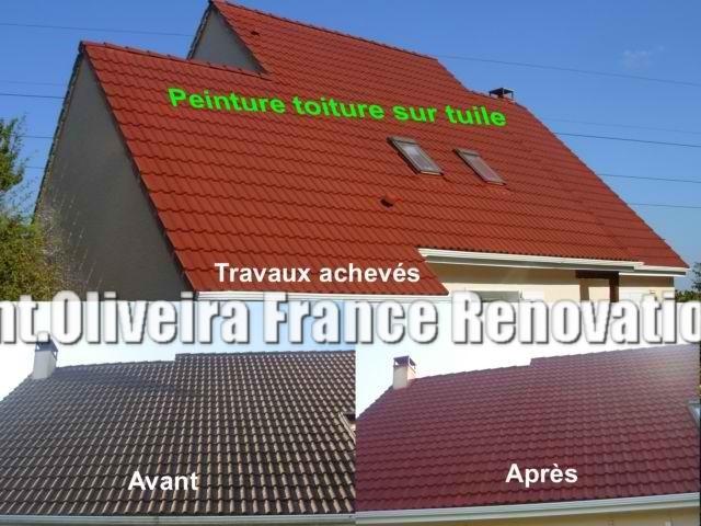 Nettoyage peinture toiture